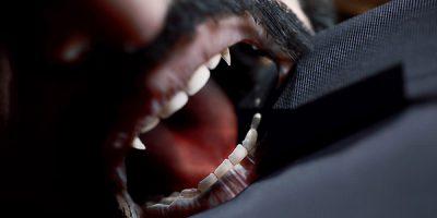 Vampire: The Masquerade – Swansong – három vámpír brutális története